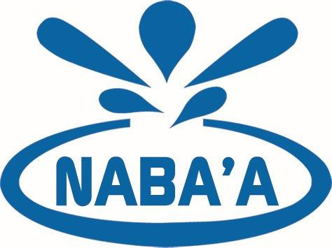 Developmental Action Without Borders (NABA